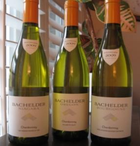 Bachelder 2009 Chardonnays