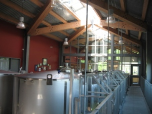 View of the roof from the production area into the tasting room at Fielding Winery