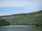 More Vineyards along the Mosel River
